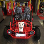 TRAILMASTER XRX 150 BUGGY